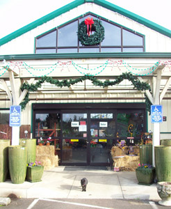 Front of Shonnard's Nursery, Florist and Landscape in Corvallis, Oregon, with Olive the cat